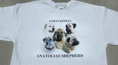 Anatolian Shepherd Dog Tshirt Design